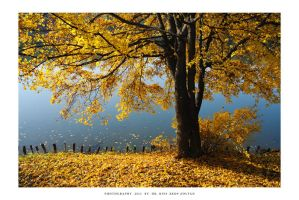 Autumn in Malomvolgy - II by DimensionSeven