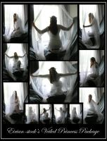 Veiled Princess Package by Eirian-stock