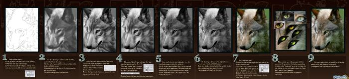 Updated Fur Tutorial by Novawuff