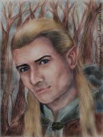 Legolas by vegetanivel2