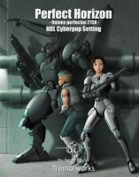 Perfect Horizon Front Cover by Aerythes