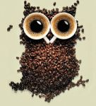 Coffee owl (0v0) by owlluver00