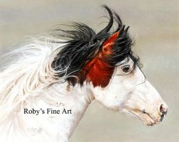 """Wind Chaser"" - Realism by robybaer"