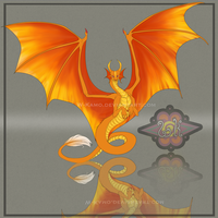 Flame Dragon by Kamzeia-MS
