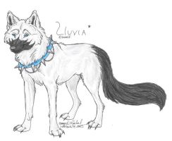 Trade: Lluvia by NightTracker