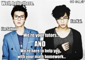 exo macro4 by TwisterWithEunHae