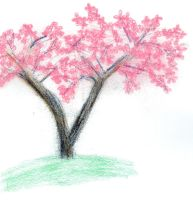 Cherry Blossom by scr1bbl3m0nst3r