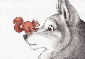 The Wolf and The Squirrel by Penguinity