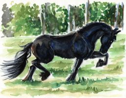 Power of the Friesian horse-Watercolor version by rainsingingdragon