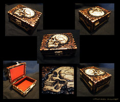 woodburning skull box by undead-medic