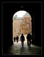 Missed Pictures - 30 (Wawel's Castlle Entrance ) by skarzynscy