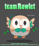 Team ROWLET by Nekoi-Echizen