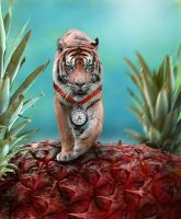 The Quest of the Tiger by Bavo