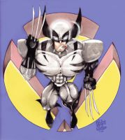 Wolverine by Hoot74