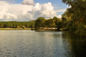 Shore of the lake is surrounded by trees by Tumana-stock
