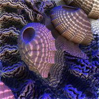 Blacklight Barnacles by CO99A5