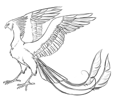 Riding Phoenix Concept Sketch by strideroo