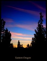 Eastern Oregon Sunset by silvercypress