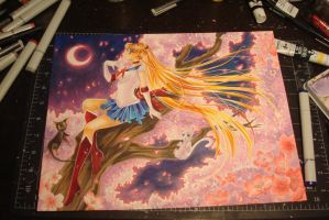 Sailor Moon Original by Mireielle
