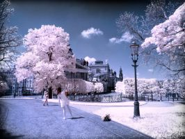Two Tourists in Dresden infrared by MichiLauke