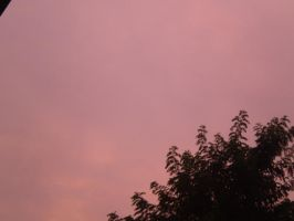 the pink sky above by mysteriousfantasy