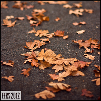 Autumn Leaves by Molosseraptor