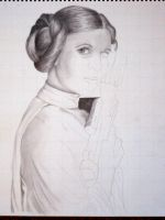 Leia WIP 3 by theant4