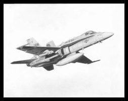 F-18C VMFA-314 by Raptorguy