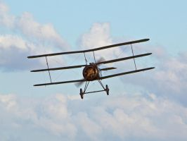 Sopwith Triplane Old Warden by davepphotographer