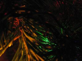 029.  Tannenbaum by mynti-stock
