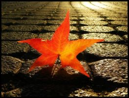 cobbles aflame by Shellbel