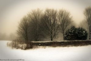 Old Winter by horai
