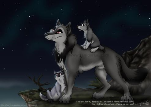 Showing the wolfways by TaniDaReal