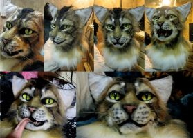 Tabby cat mask! by Crystumes