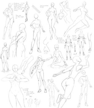 Female anatomy 4 by Precia-T