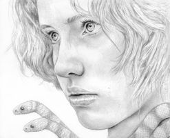 The Milk Snake by MichaelShapcott