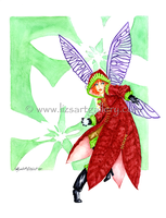 Poinsettia by Ihha