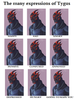 Many (more) expressions by Ziblink