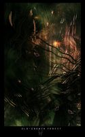 old-growth forest by xinus