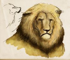 Lion by Phostex