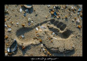 footprint in the sand by fightingtears