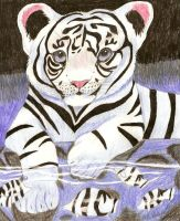 White Tiger with Fishes by SolitaryGrayWolf