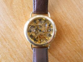 My mechanical watch by SteamJo