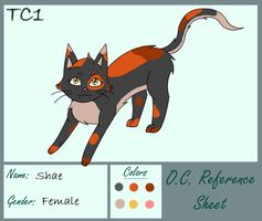 Shae Reference sheet by slycooper998