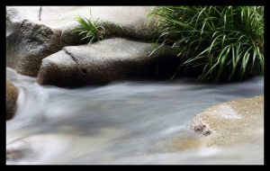Running Water by LynTaylor