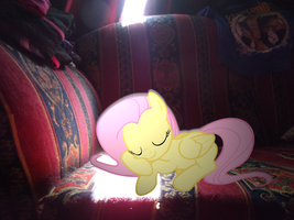 Fluttershy At Rest by MissiTofu