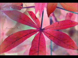 . . Every leaf speaks . . by Exceptional-Mind
