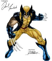 Wolverine colored by Daniel-Trindade