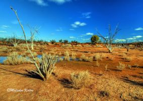 Colours of the Outback by FireflyPhotosAust