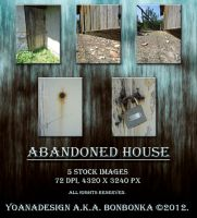 Abandoned House by bonbonka